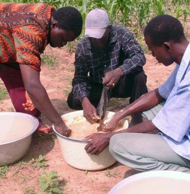 Příprava potravinového postřiku pro biobavlníkové pole v Beninu. Potravinové postřiky přilákají hmyz, který pomáhá udržet škůdce biobavlny pod kontrolou.
